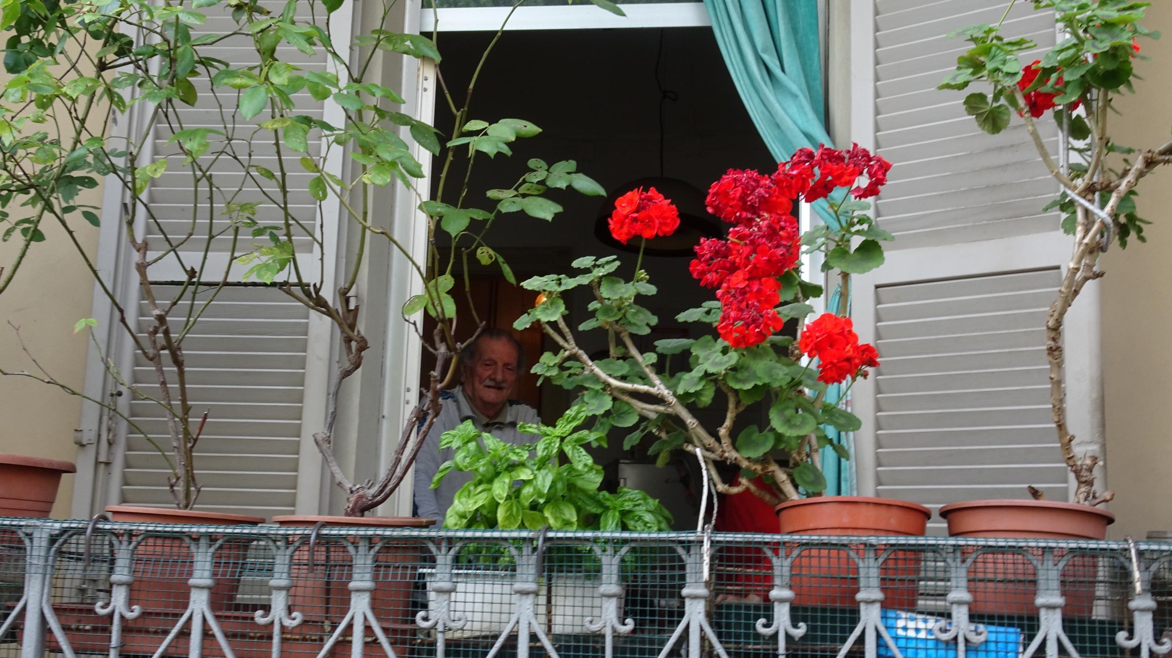 Pierino e i suoi gerani di casa