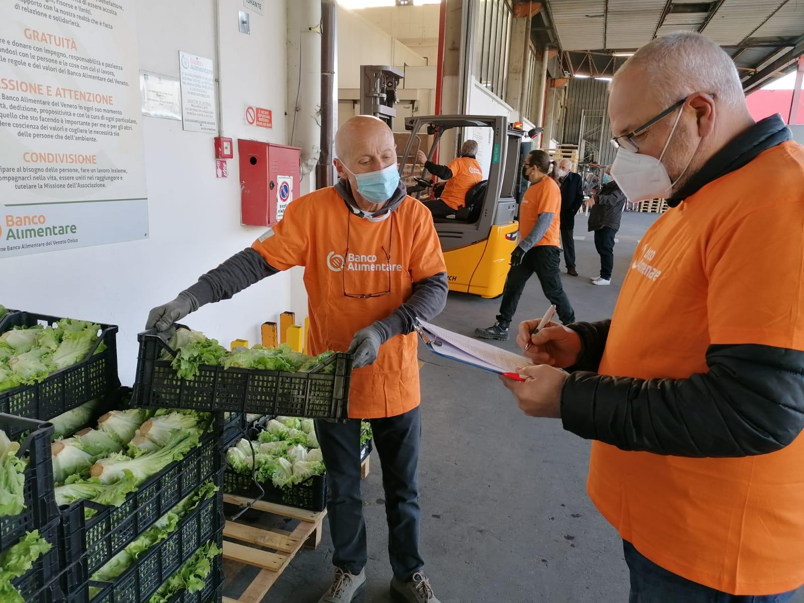 Prende il via il progetto FOOD NO WASTE - foto recupero